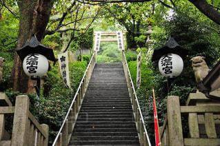 神社の写真・画像素材[362775]