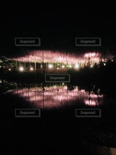 水面に映る夜の藤棚の写真・画像素材[1340651]