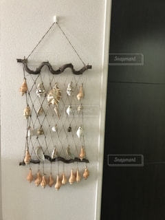 貝殻の写真・画像素材[1332957]