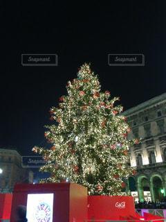 建物の前にクリスマス ツリーの写真・画像素材[1341752]