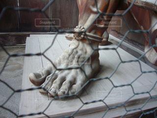 金剛力士像の足の写真・画像素材[1367183]