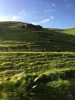 ニュージーランドの写真・画像素材[1335476]