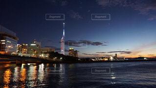 福岡タワー夜景の写真・画像素材[1335421]