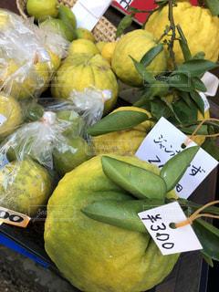 メチャ大きな柚の写真・画像素材[1618924]