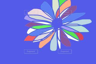 花の名?の写真・画像素材[1347937]