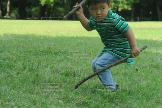 木を振り回す男の子の写真・画像素材[1337252]