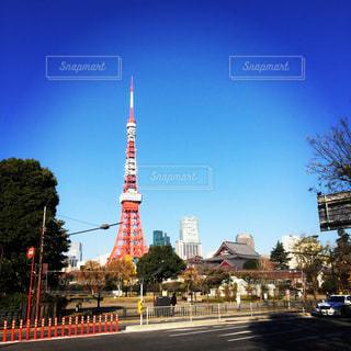 芝公園からの東京タワーの写真・画像素材[1343908]