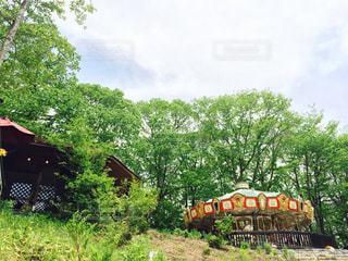 森林の中のメリーゴーランドの写真・画像素材[1343132]