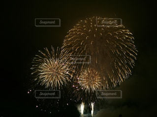 夜空に花火の写真・画像素材[1337393]