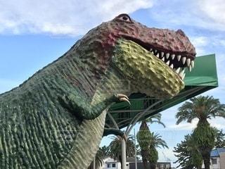 博物館の恐竜の写真・画像素材[1387087]