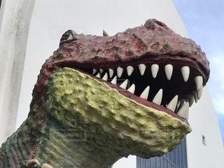 博物館の恐竜の写真・画像素材[1387088]
