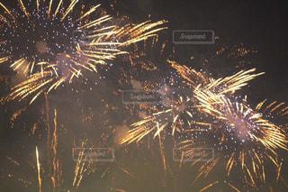 花火の写真・画像素材[1338802]