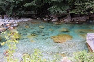 上高地の川の写真・画像素材[1338805]