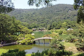 日本庭園の写真・画像素材[1338820]