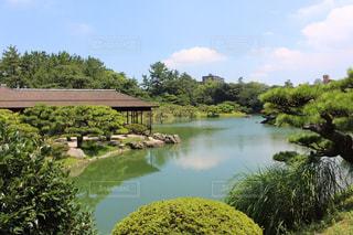 美しい日本庭園の写真・画像素材[1338844]