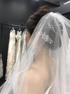 ウェディングドレス試着の写真・画像素材[1444980]
