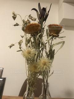 花瓶にさしたドライフラワーの写真・画像素材[1521892]