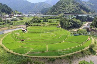 和歌山県 あらぎ島の写真・画像素材[1548922]