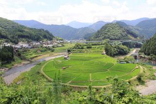 和歌山県あらぎ島の写真・画像素材[1549026]
