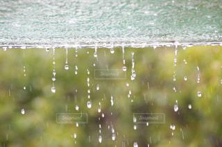 雨の日の写真・画像素材[1553881]