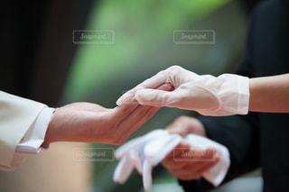 新郎と新婦の手の写真・画像素材[1555385]