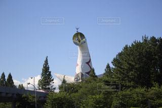 万博公園の太陽の塔の写真・画像素材[1556449]