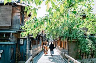 京都での和装前撮り 色打掛と紋付袴を着た夫婦の写真・画像素材[1590414]