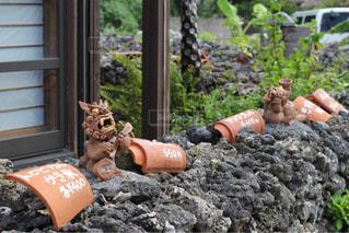 竹富島で見つけたシーサーの写真・画像素材[1630041]