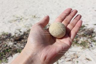 石垣島の砂浜で拾った石の写真・画像素材[1631301]