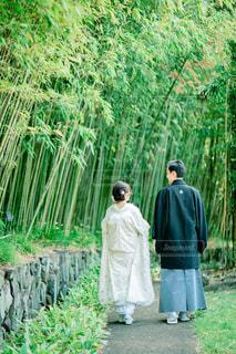 京都での和装前撮りの写真・画像素材[1633905]