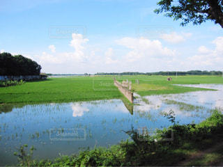 バングラデシュの風景の写真・画像素材[1691639]