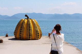 直島の黄かぼちゃの写真・画像素材[2113403]