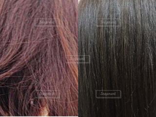 女性の髪の毛の写真・画像素材[2828463]