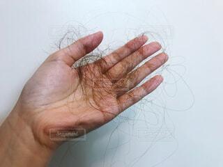 抜け毛を持つ手の写真・画像素材[4124000]