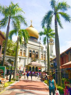 シンガポールのモスクの写真・画像素材[1383081]