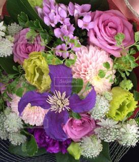 花束の写真・画像素材[1340532]