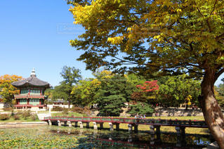 韓国・景福宮・香遠池の写真・画像素材[1368888]