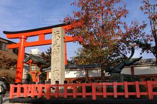 京都・伏見稲荷大社の写真・画像素材[1373335]