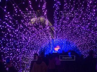 江ノ島 光のトンネルの写真・画像素材[1342536]