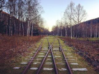 線路の写真・画像素材[1349146]