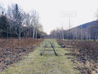 配線の線路の写真・画像素材[1349147]