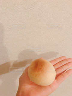 出来立てパンの写真・画像素材[1363866]