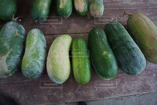 冬瓜の収穫の写真・画像素材[1460687]