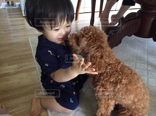 犬と遊ぶ子供の写真・画像素材[1343550]