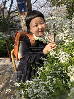 花の写真・画像素材[1344732]