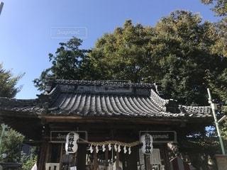 神社の写真・画像素材[1562427]