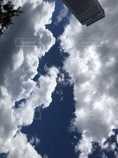 夏空の写真・画像素材[1345271]