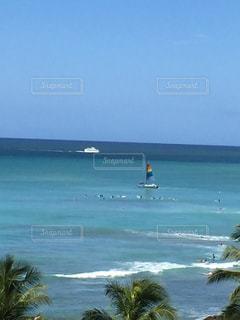 ハワイのヨットの写真・画像素材[1347375]