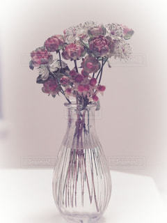 花の写真・画像素材[1346957]