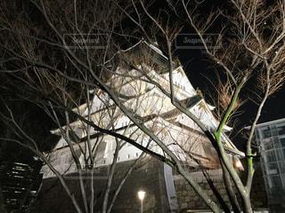 夜の大阪城の写真・画像素材[3023109]